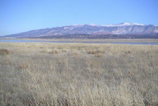 20 Acres West of Quichapa Lake, Utah