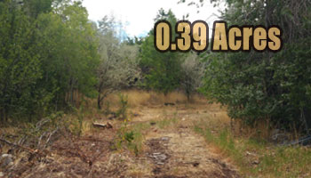 SOLD: 0.39 Acre Treed Lot Cedar City, UT
