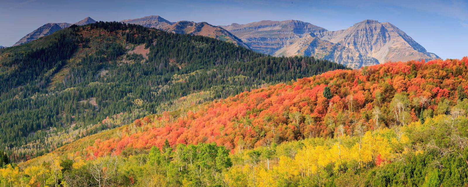 Utah Land Sale